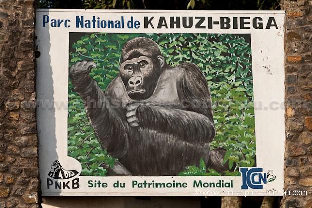 Parc National Kahuzi-Biega - RDC